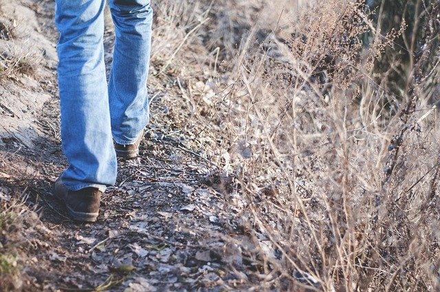 chůze po cestičce